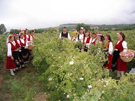 0317rose_field_with_singers.JPG