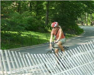 CentralPark_bicycle.jpg