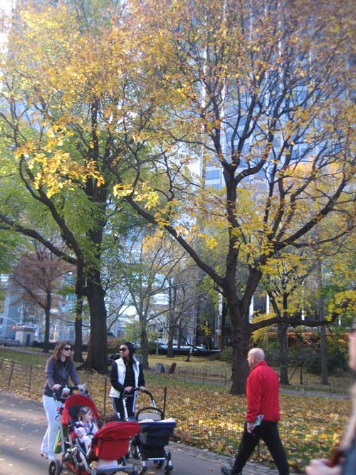centralpark2.jpg