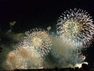 fireworks_8md.jpg