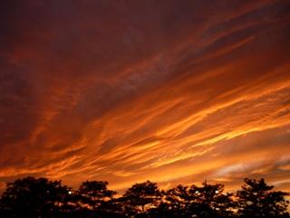 fireworks_sunset.jpg