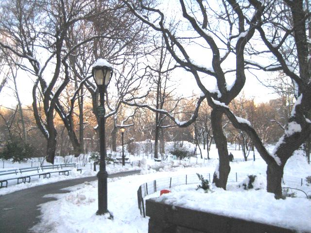 snow4B.jpg