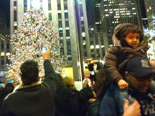 tree_family2.jpg