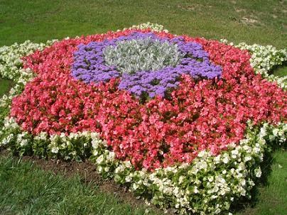 flower%20fair2.JPG